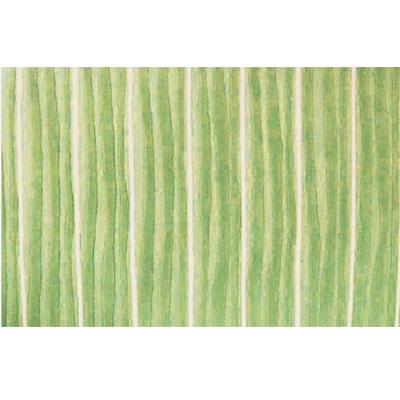 Home Dynamix Kidz Image 5 x 7 Mellow Green Area Rugs