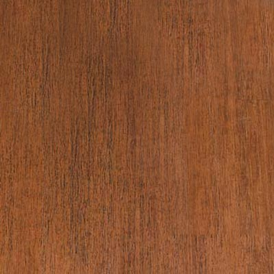 Teragren Portfolio Collection Honey Ridge Bamboo Flooring
