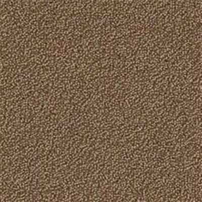 Mannington Color Canvas Briar Carpet Tiles