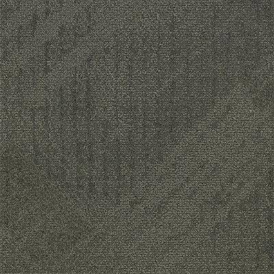 Mannington Profile Disclose Carpet Tiles