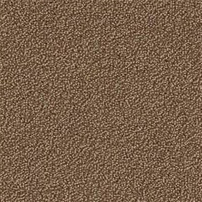 Mannington Terry Cloth Briar Carpet Tiles