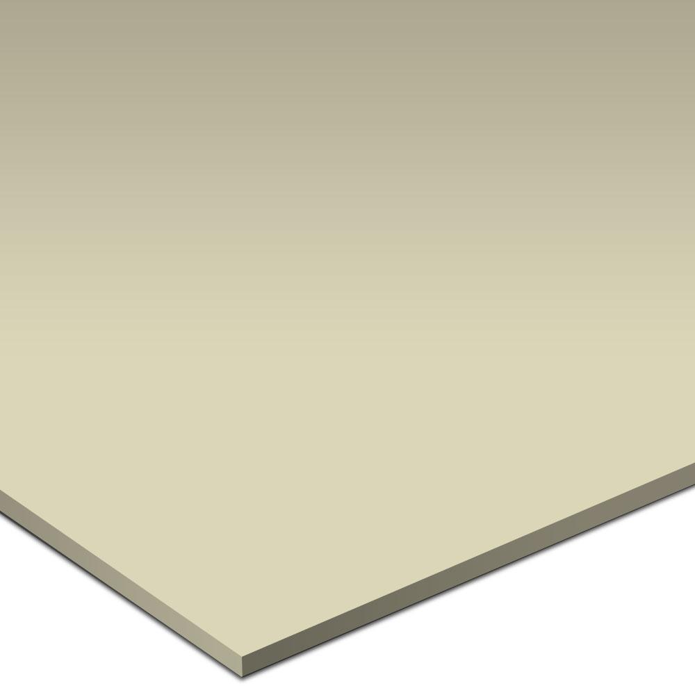 American Olean Matte 6 x 6 Matte Sand Dollar Tile & Stone
