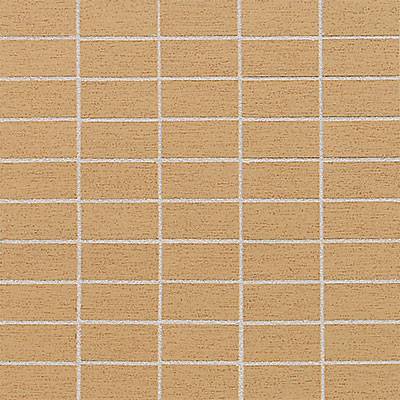 American Olean St Germain 2 x 1 Mosaic Or Tile & Stone
