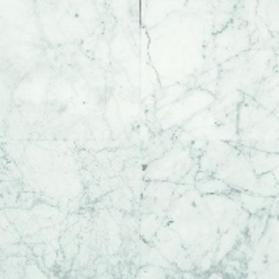 American Olean Stone Source Marble and Onyx 12 x 12 Carrara Gioia Polished Tile & Stone
