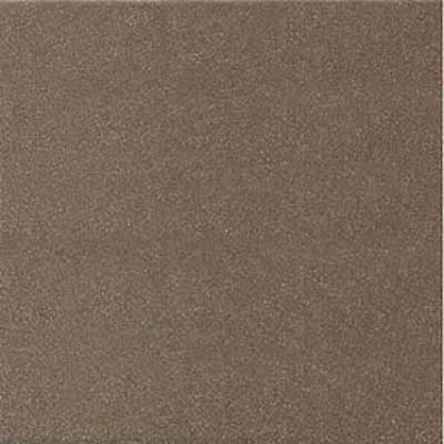 American Olean Sure Step II and Paver Fawn Gray Paver Tile & Stone