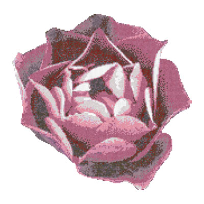 Bisazza Mosaico Piscine - Swimming Pools Rosa Rosa Tile & Stone
