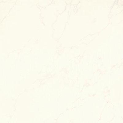 Daltile Cappella 24 x 24 Gardini Blanco Tile & Stone