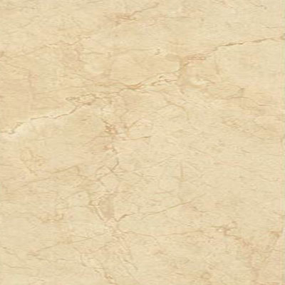 Daltile Florentine 12 x 24 Wall Tile Marfil Tile & Stone