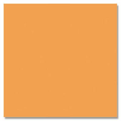 Daltile Gallery (Next) 12 x 24 Unpolished Floor Tile Orange Tile & Stone