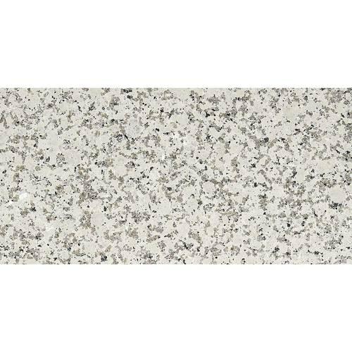 Daltile Granite 12 x 24 Flamed Chloe White Flamed Tile & Stone