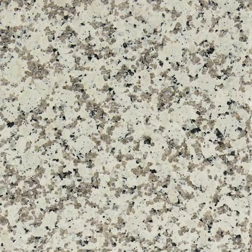 Daltile Granite 12 x 24 Polished Chloe White Polished Tile & Stone