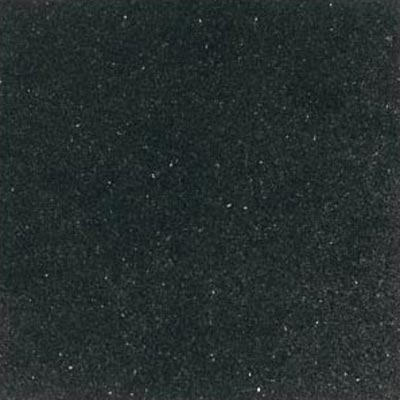 Daltile Granite 18 x 18 Polished Galaxy Black Tile & Stone