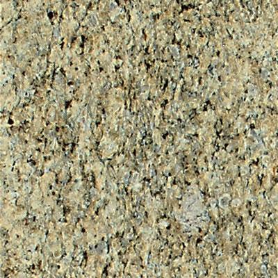 Daltile Granite 12 x 12 Polished Giallo Ornamental Tile & Stone