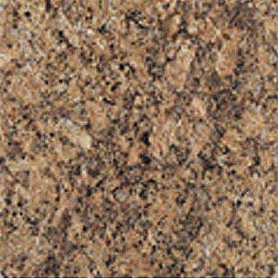 Daltile Granite 12 x 12 Polished Giallo Veneziano Tile & Stone