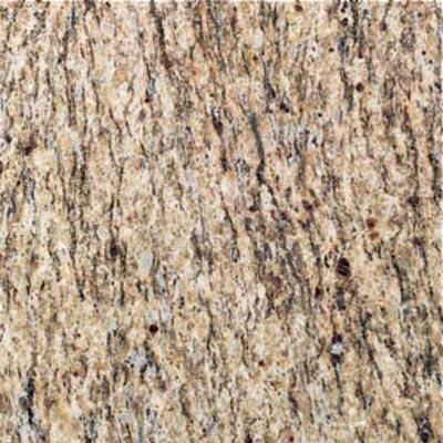 Daltile Granite 12 x 12 Polished Santa Cecilia Tile & Stone