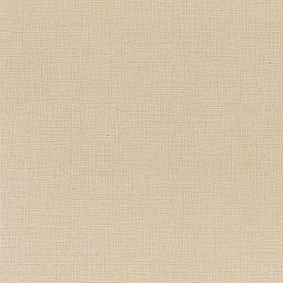 Daltile Kimona Silk 2 x 24 Rice Paper Tile & Stone