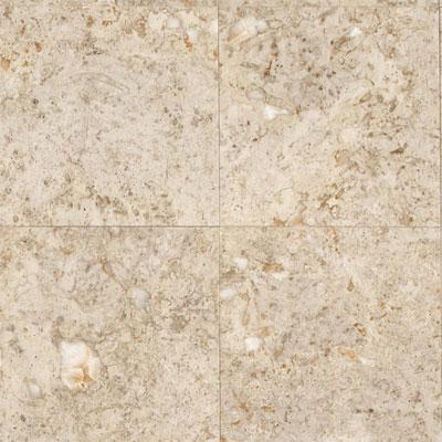 Daltile Limestone 12 x 12 Honed Napolina Tile & Stone