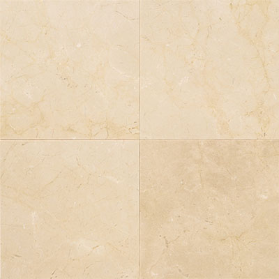 Daltile Marble 12 x 12 Honed Crema Marfil Elegance Honed Tile & Stone