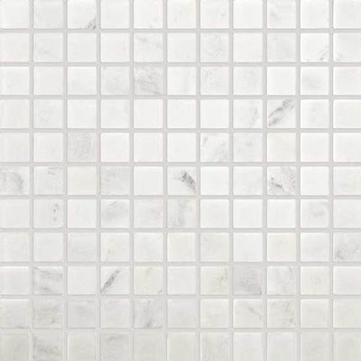 Daltile Marble 1 x 1 Mosaic First Snow Elegance Tumbled Tile & Stone