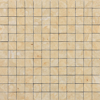 Daltile Marble Mosaic 1x1 Honed Champagne Gold Tile & Stone