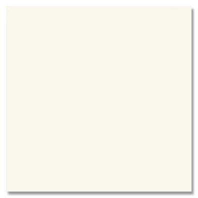 Daltile Match-Point 12 x 24 Unpolished Pure White Tile & Stone