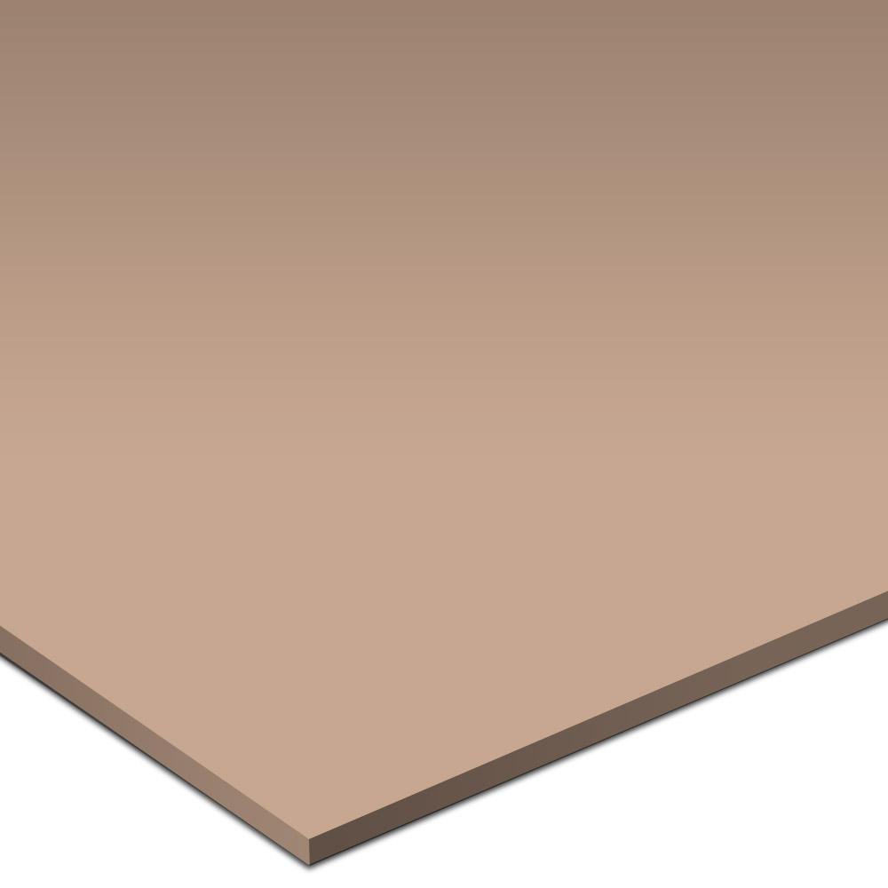 Daltile Natural Hues 6 x 12 Spice Tile & Stone