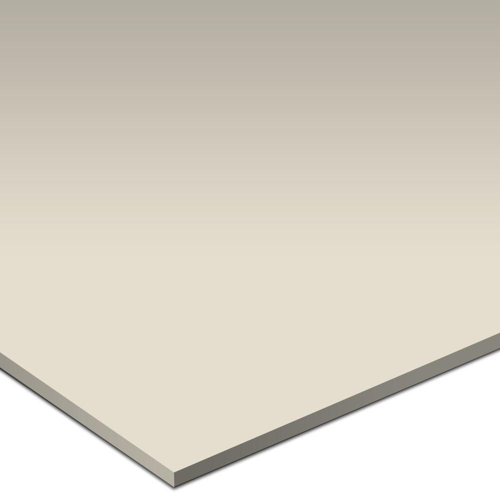Daltile Natural Hues 6 x 12 Vanilla Tile & Stone