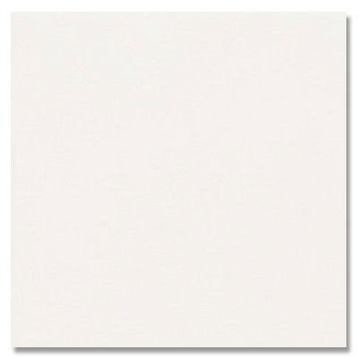 Daltile Permabrites 2 x 2 Arctic White Tile & Stone