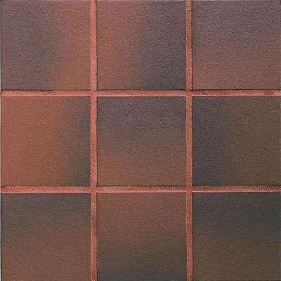 Daltile Quarry Textures 8 x 8 (Abrasive) Red Flash Tile & Stone