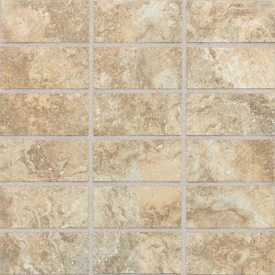 Daltile San Michelle 2 x 4 Mosaic Dorato Tile & Stone