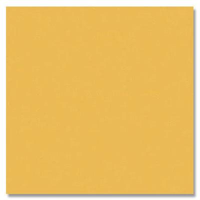 Daltile Semi-Gloss 4 1/4 x 4 1/4 Sunflower Tile & Stone