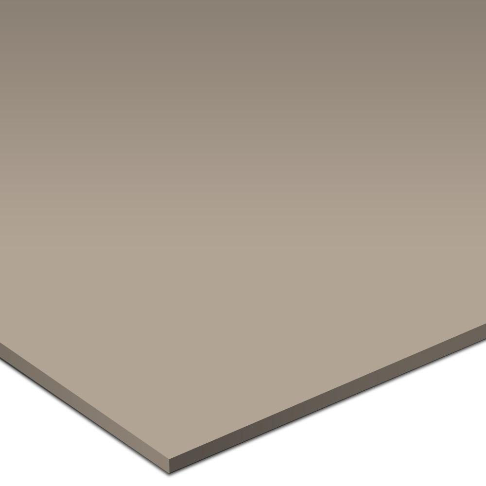 Daltile Simple Elegance 2 x 6 Destiny Urban Putty Tile & Stone