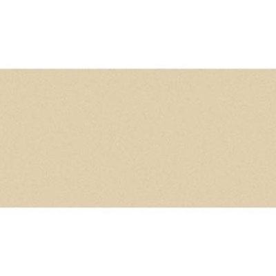 Daltile SlimLite Porcelain Classic 20 x 39 Almond Tile & Stone