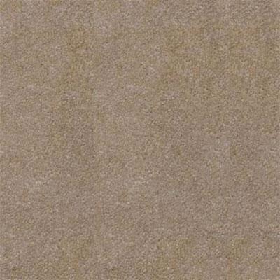 Daltile SlimLite Porcelain Terra 20 x 39 Vapor Tile & Stone