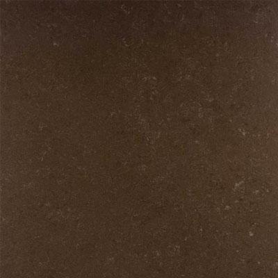 Daltile Unity Unpolished 12 x 12 Coffee Tile & Stone