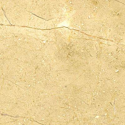 Maestro Mosaics Limestone 16 x 16 Honed Beige Fossil Tile & Stone