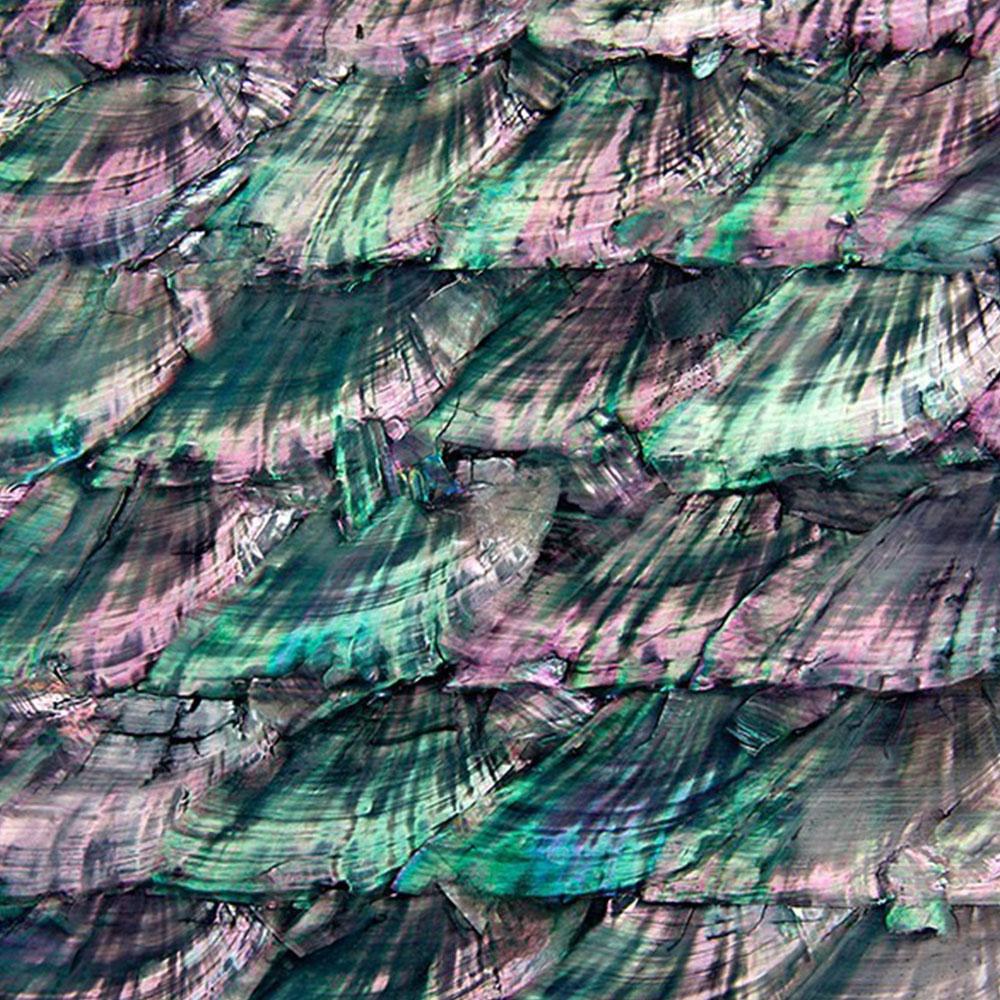 SeaTile SeaTile Laminate 12 x 12 w/ Adhesive Metalic Pearl Tint Tile & Stone