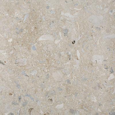 SeaStone ShellStone 26 x 72 ShellStone Buff Tile & Stone
