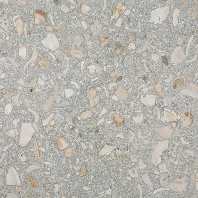 SeaStone ShellStone 26 x 72 ShellStone Grey Tile & Stone