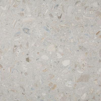 SeaStone ShellStone 26 x 72 ShellStone White Tile & Stone