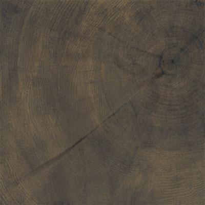 Provenza W-Age Crosscut Wood 24 x 24 Cortex Tile & Stone