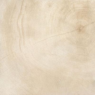 Provenza W-Age Crosscut Wood 24 x 24 Marrow Tile & Stone