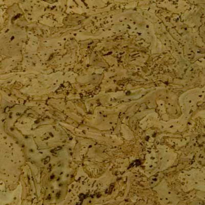 Duro Design Barriga Cork Tiles 12 x 12 Marble Green (Sample) Cork Flooring