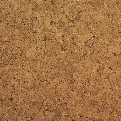 WE Cork Avant Garde Collection w/Greenshield Porto Cork Flooring