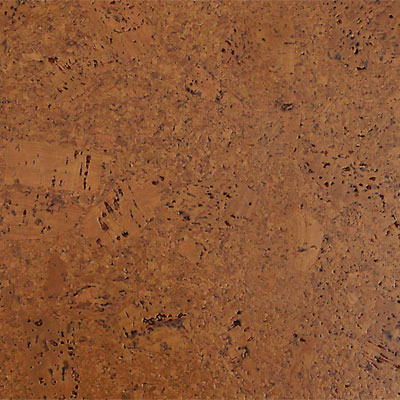 WE Cork Eco Collection Plank Earth Cork Flooring