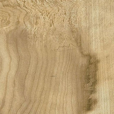 Armstrong Illusions Flaxen Maple (Sample) Laminate Flooring
