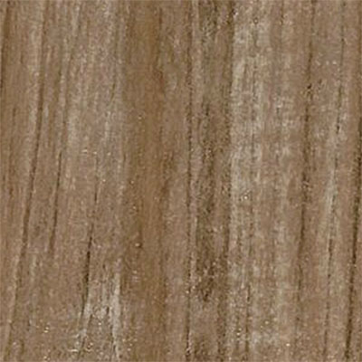 Armstrong Premier Classics Coastal Trail (Sample) Laminate Flooring