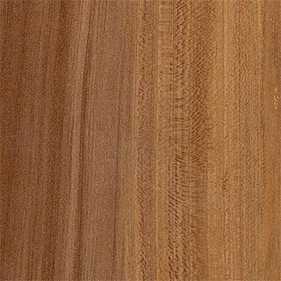 Armstrong Premium Lustre Summer Tan Fruitwood (Sample) Laminate Flooring