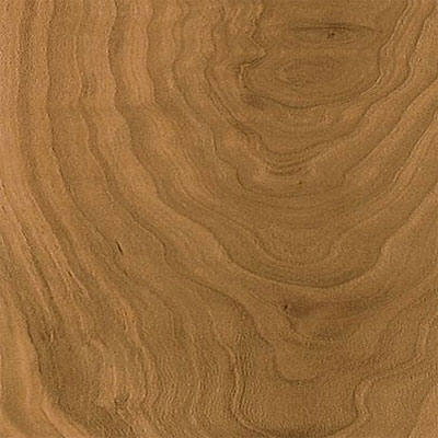 Armstrong Commercial - Premium Lustre Summer Tan Fruitwood (Sample) Laminate Flooring