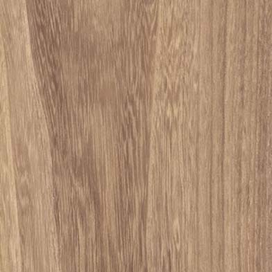 Balterio Traditions 8mm Planks Almond Maple Laminate Flooring